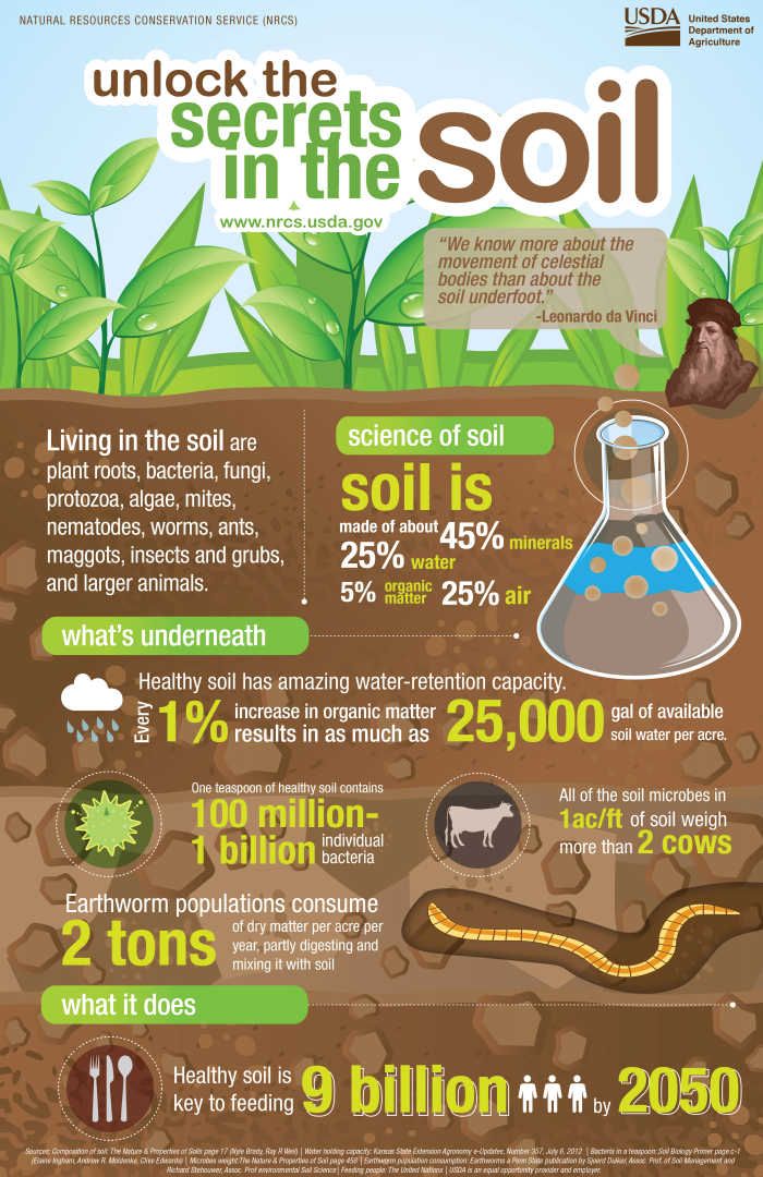 Soil Health and Agricultural Sustainability