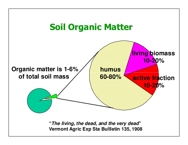 managing-organic-matter-for-soil-health-and-fertility-5-638