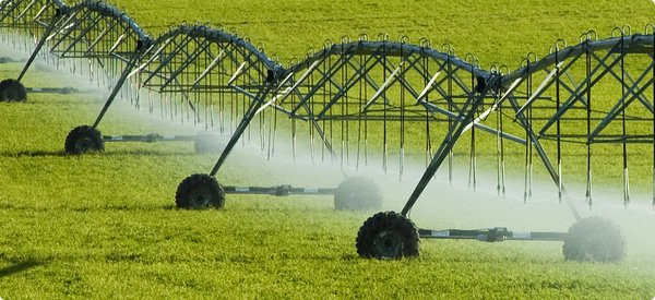 Improvements In Agricultural Technology Increase Farm Yields