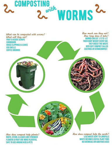 compostingwithwormsposter